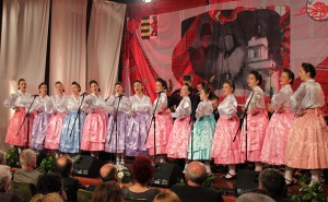Централна преслава Националного швета Руснацох у Вербаше1
